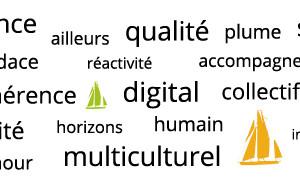 Expertise Navigauteurs agence digitale